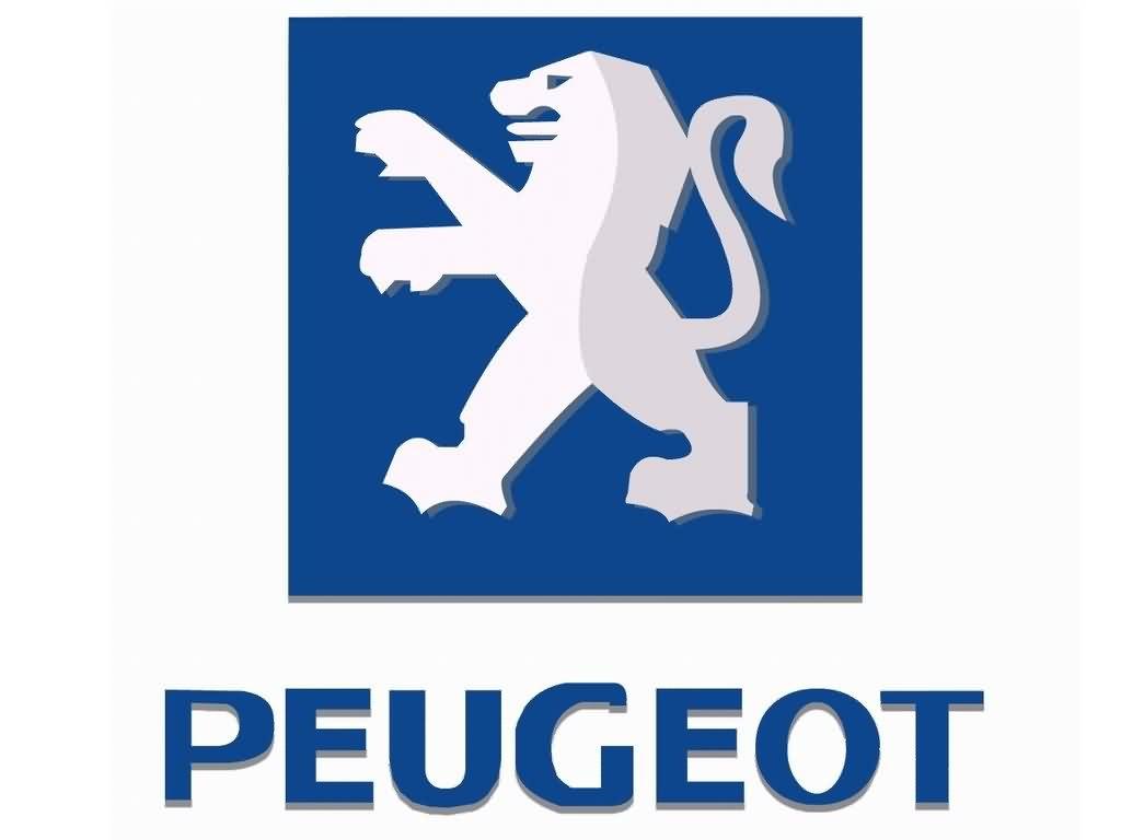 Впускная труба для PEUGEOT
